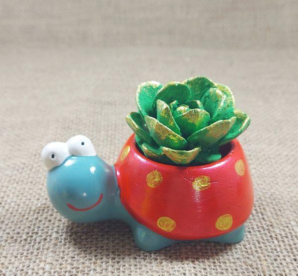 Kaplumbağa Yumurtalık Kokulu Taş | Hüner Hediyelik